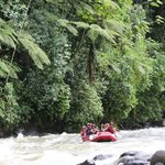 Rafting on the Sarapiqui