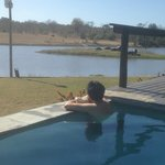View from their pool overlooking their water hole / hippos.