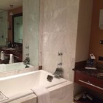 Very large bathroom with all amenities