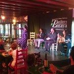 Flamenco show at the Jardines de Zoraya, July 2014