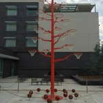Basketball tree in front of hotel
