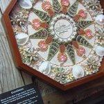 Award-winning shell skrimshaw art.