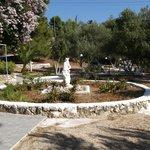 Photo of Fiore di Mare Studios