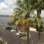 palm tress & bay view from our room