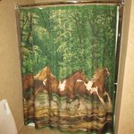 shower curtain in our room.  how cool is that?