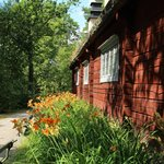 red cottage and daylilies