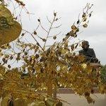goudkleurige blaadjes die je kunt beschrijven