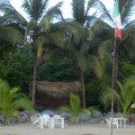 Vista desde la playa de los Bungalows y el Bar