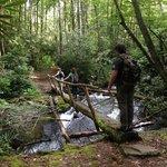 Twenty Mile Trail - GSM National Park