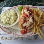 Lobster Roll for Lunch