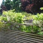 The beautiful gardens around the house