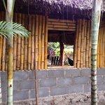 Lazy crab hostel Balgüe isla de Ometepe
