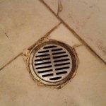 Siphon de la salle de bain , pas très propre