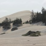 Ride the dunes - bring your own or rent locally
