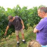 Christophe showing us the vines at Ch De Panisseau