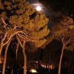 Cocktail sous la pleine lune