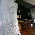 L'intérieur de la tente