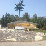 Hwy 11 Rock Pine Pickerel