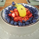 Dolphin swimming in the fruit salad