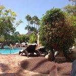 Vista desde piscina4