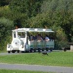 Le petit train roule autour du lac.