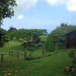 Greenwell Farms