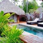 Vue jardin du bungalow Suite junior avec piscine