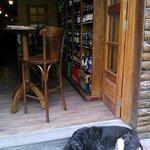 Na entrada da cervejaria, o mascote, já velhinho, passa o dia dormindo ....
