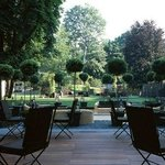 The amazing garden
