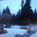 Vista nevada
