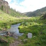 The E. Bellows Creek Crossing