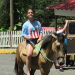 The staff can help organize different activities like horse back riding, just ask