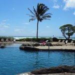 Pool fronsite ocean