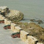 Vue de la Skala du port Essaouira