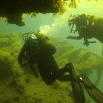On the wreck of the Maori