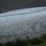 View of the Glacier from the Harding Icefield Trail