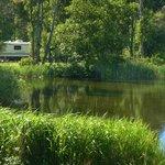 Weir's Lagoon