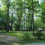 One of our primitive tent camping area