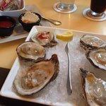 Yummy fresh oysters!