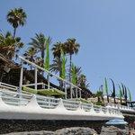 monkey beach bar