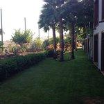 Jardín en la terraza de la habitación