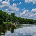 Kayaking on the Wakulla river