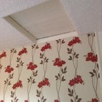 the above bed loft hatch