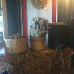 Whole macadamia nuts on display