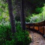 le train vu du dernier wagon côté gauche