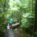 one of the walking tracks...our children loved it