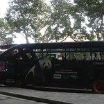 De bus naar het park toe.