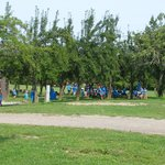 Picnic areas (YMCA day camp)