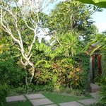 Onze prive tuin