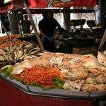 Schaaldieren en vis...